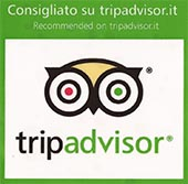 Review Us on Tripadvisor